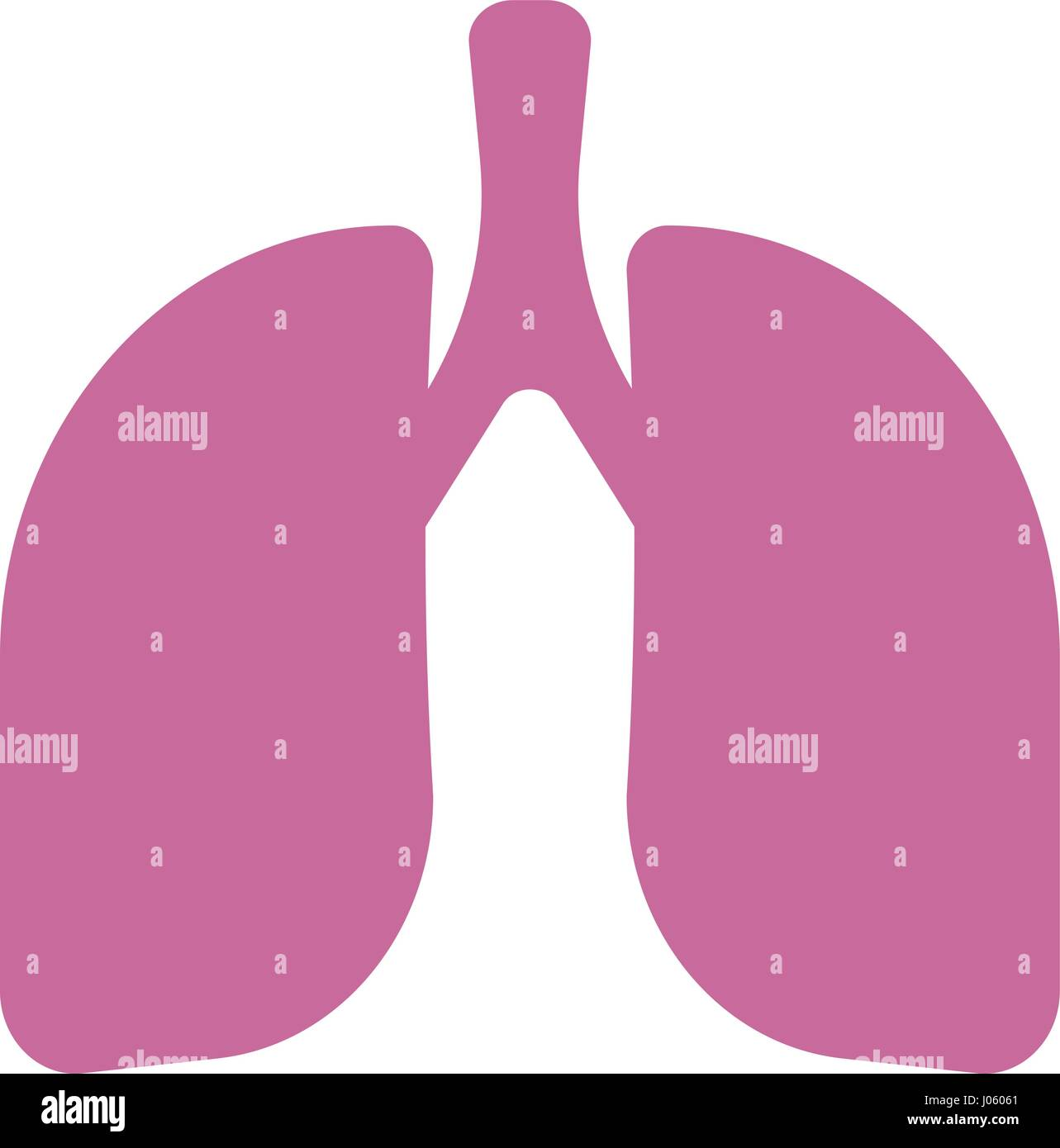 Vector isolated icons - human organs. Lungs on a white background - Stock Vector