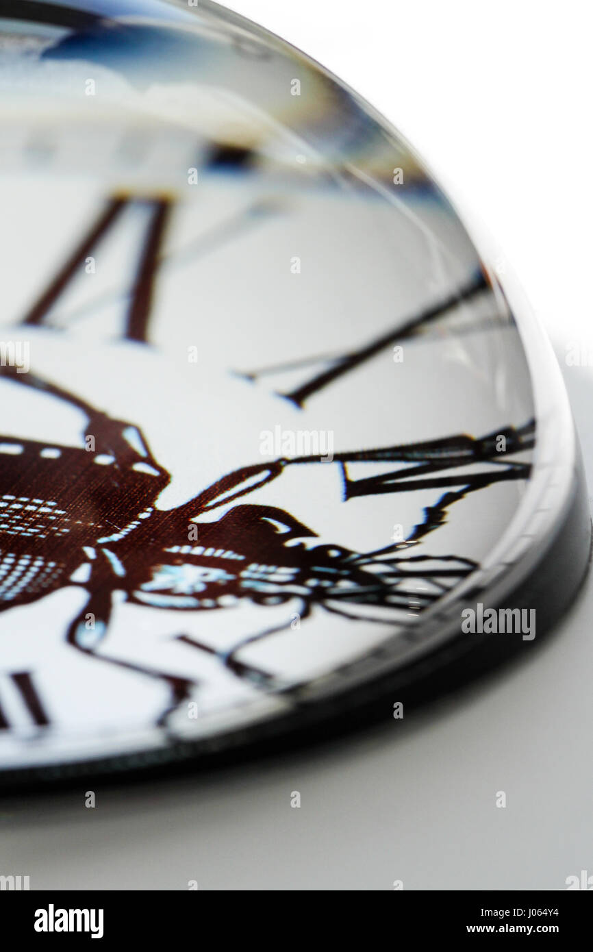 Desk art. Closeup image of a clear glass paperweight showing a black and white print of a beetle insect with roman - Stock Image