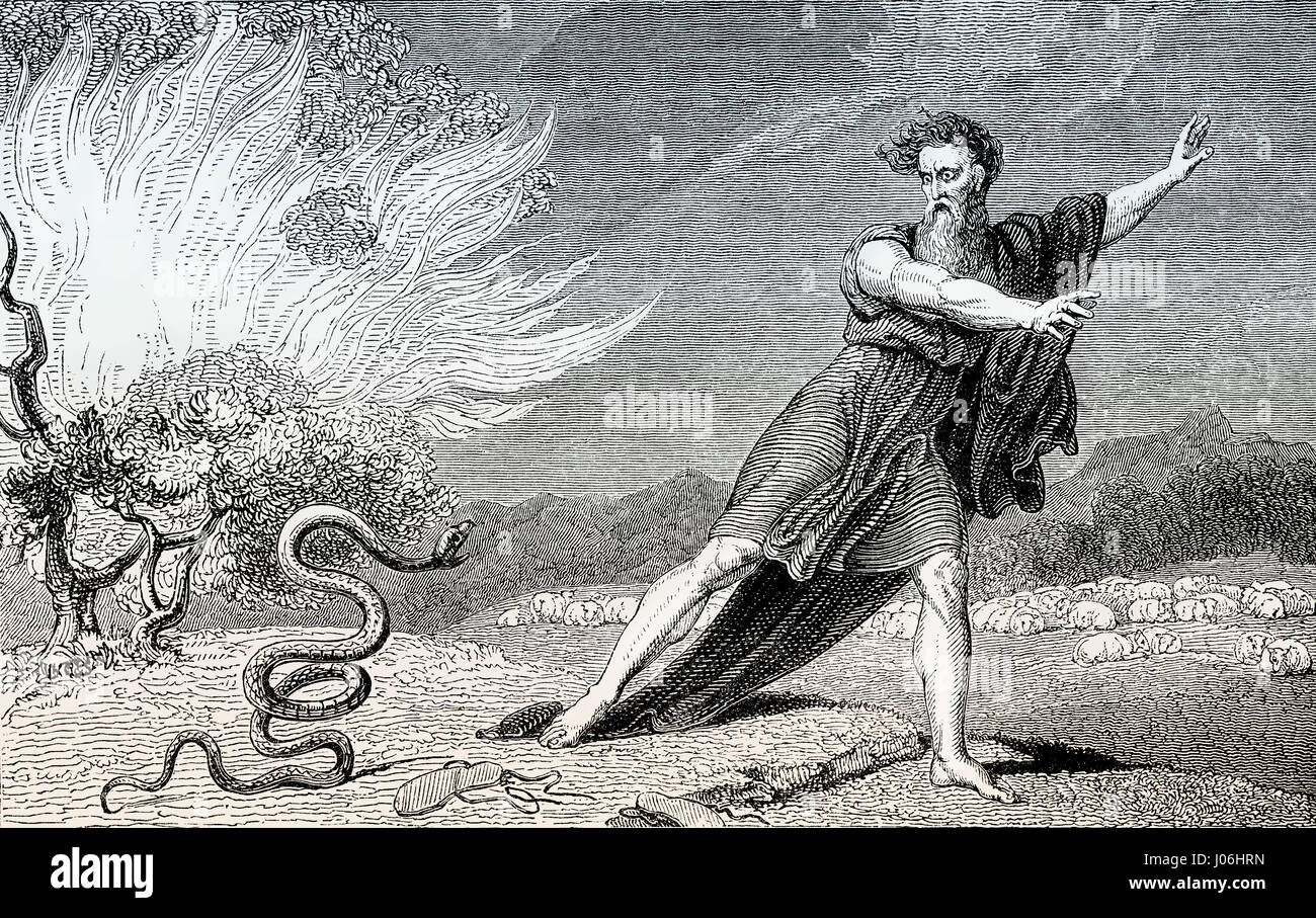 The rod becomes a serpent, Moses, Book of Exodus, Old Testament, Hebrew Tanakh - Stock Image