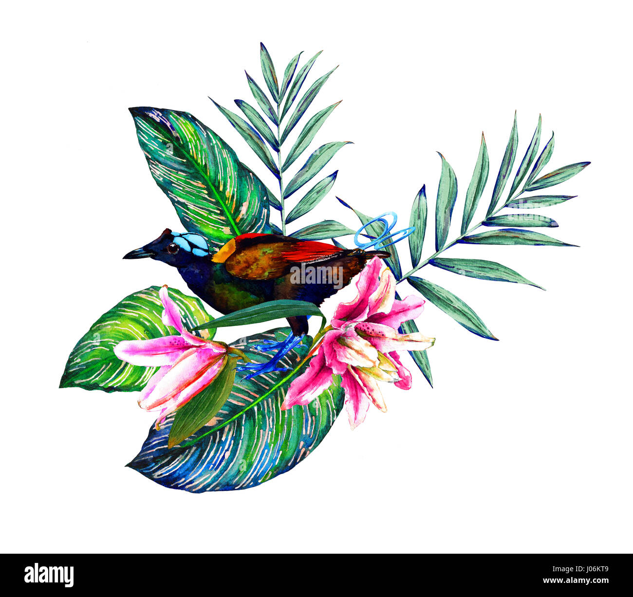 Tropical bouquet exotic flowers of lily rain forest palm and stock exotic flowers of lily rain forest palm and calathea leaves with wilsons bird of paradise handmade watercolor isolated on white izmirmasajfo