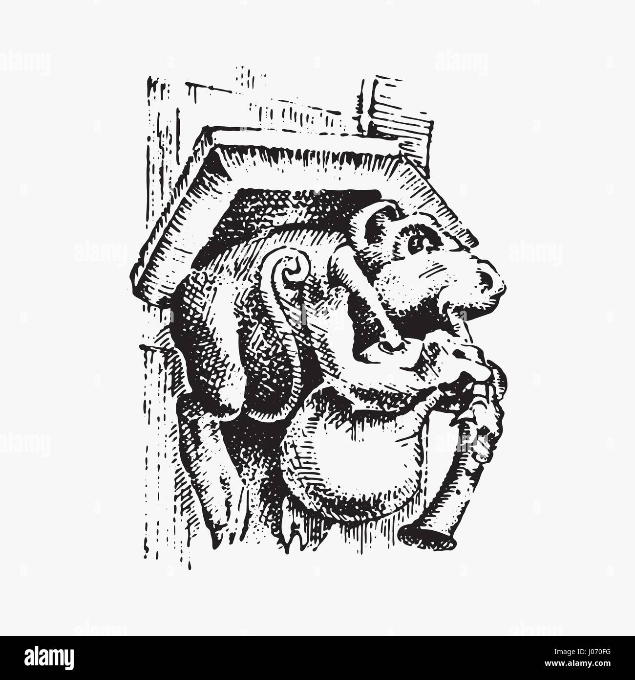 Gargoyle Chimera of Notre-Dame de Paris, engraved, hand drawn vector illustration with gothic guardians include - Stock Image
