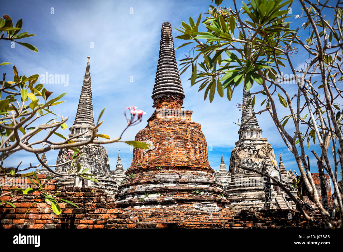 Big ruined Stupa at Wat Si Sanphet in Ayuttaya historical capital of Thailand - Stock Image