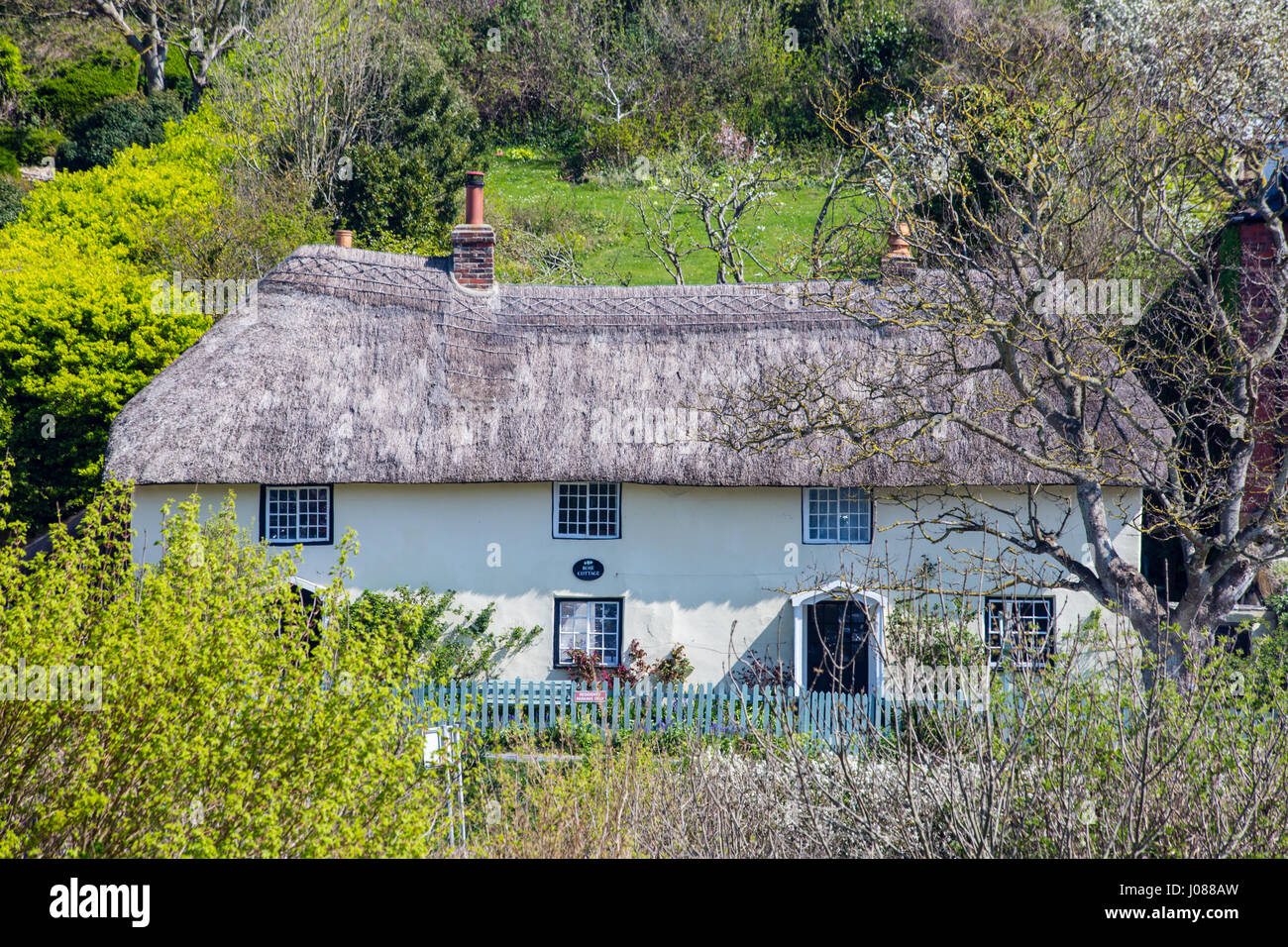 Quaint thatched cottage in West Lulworth village, Dorset, England, UK - Stock Image