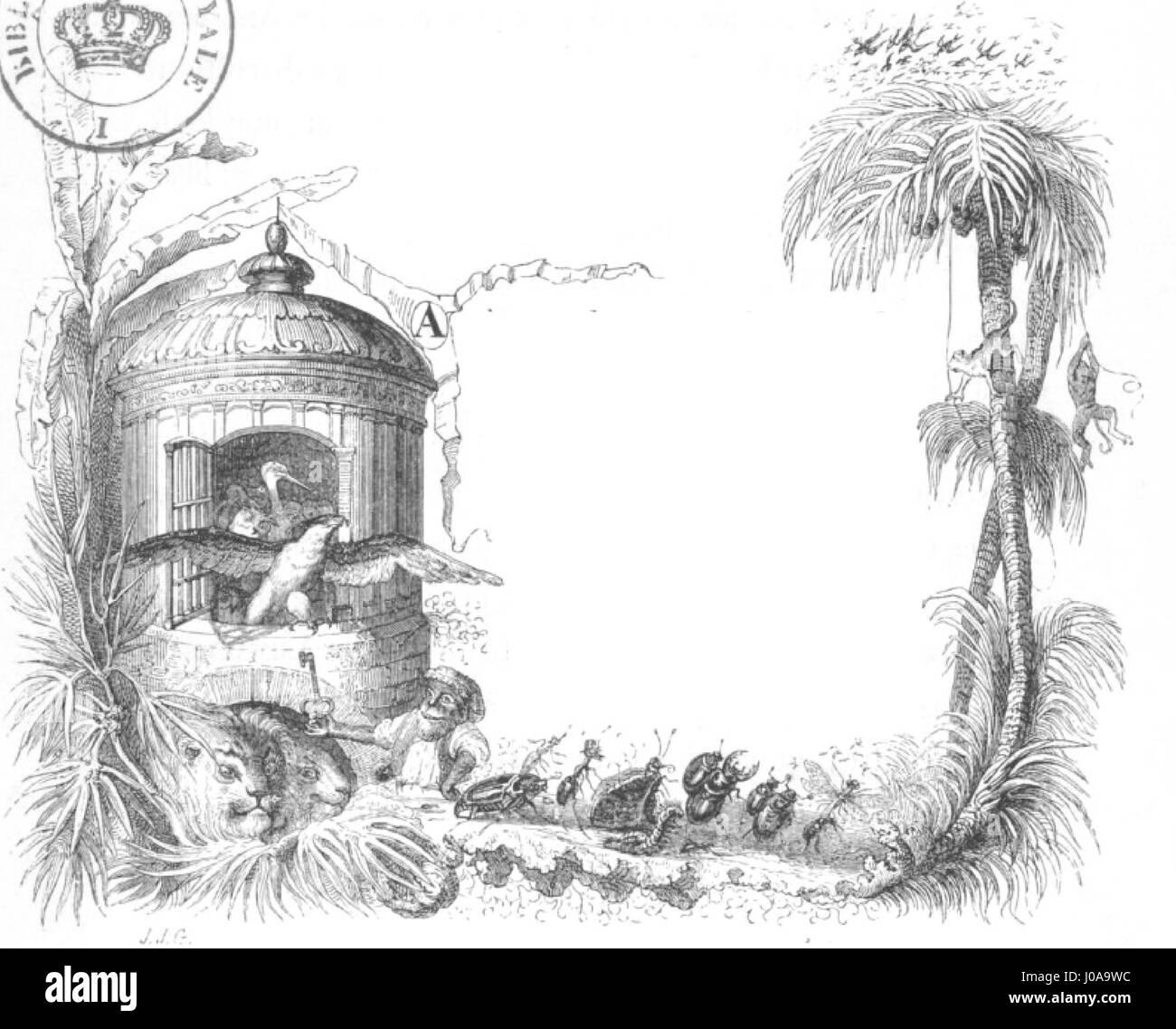 Scènes de la vie privée et publique des animaux, tome 1 0033b - Stock Image