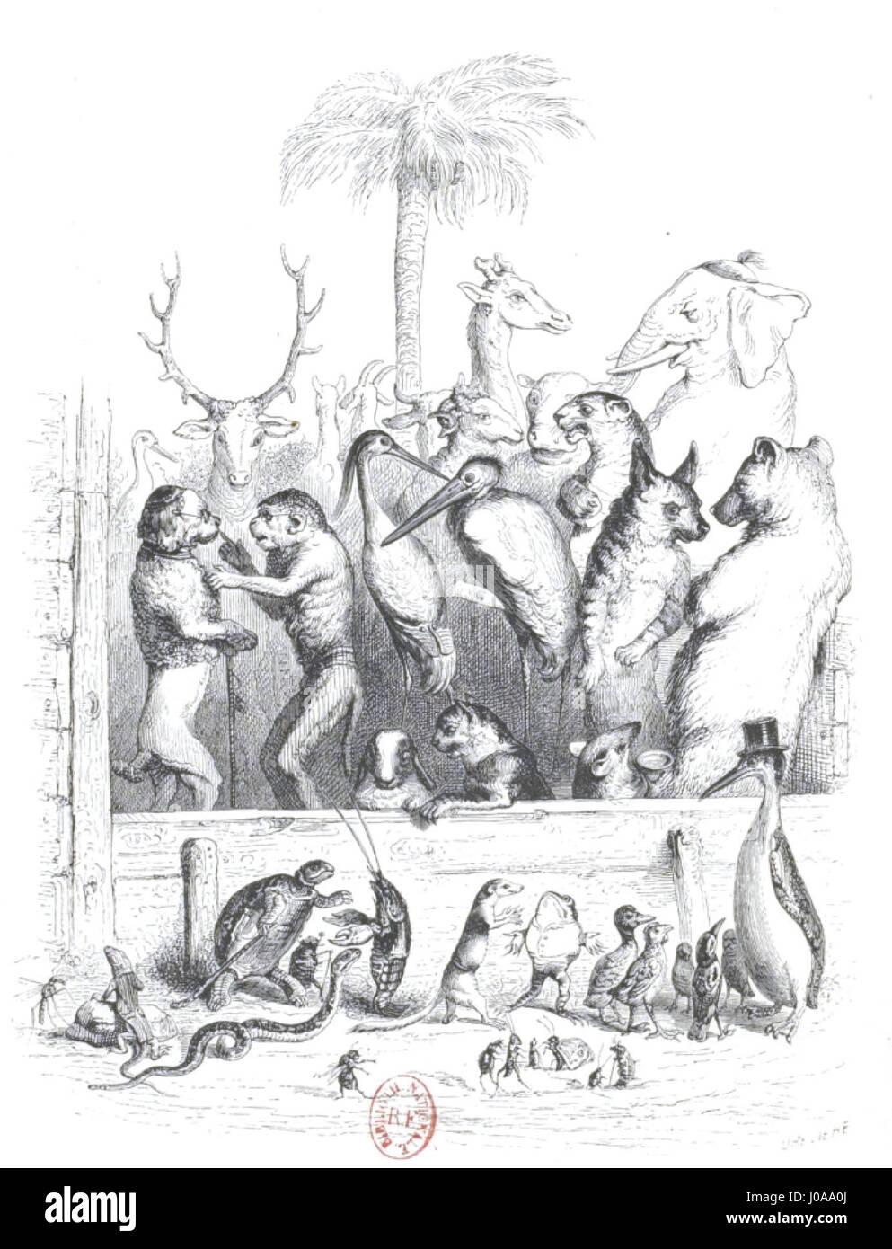 Scènes de la vie privée et publique des animaux, tome 1 0062 - Stock Image