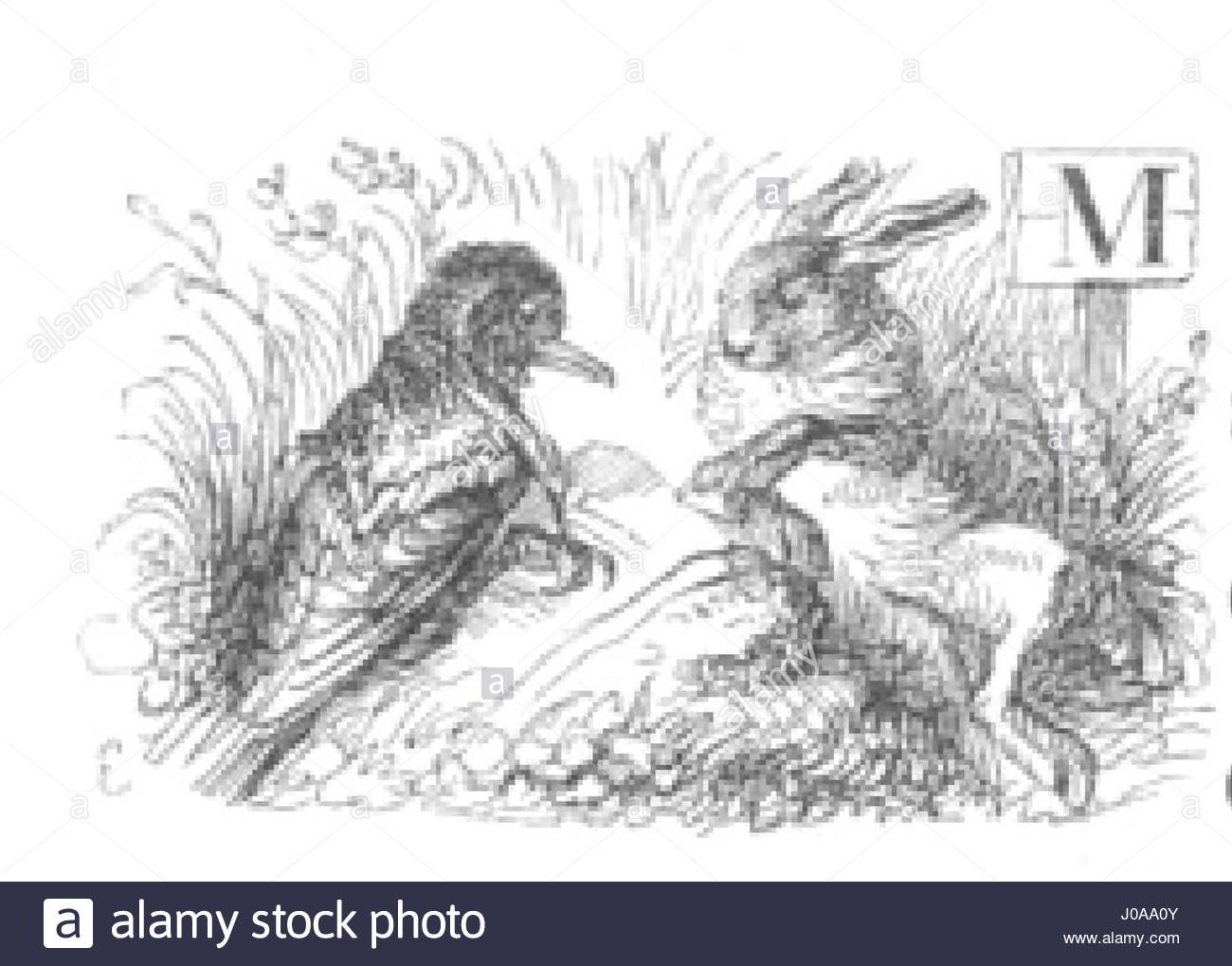 Scènes de la vie privée et publique des animaux, tome 1 0079 - Stock Image