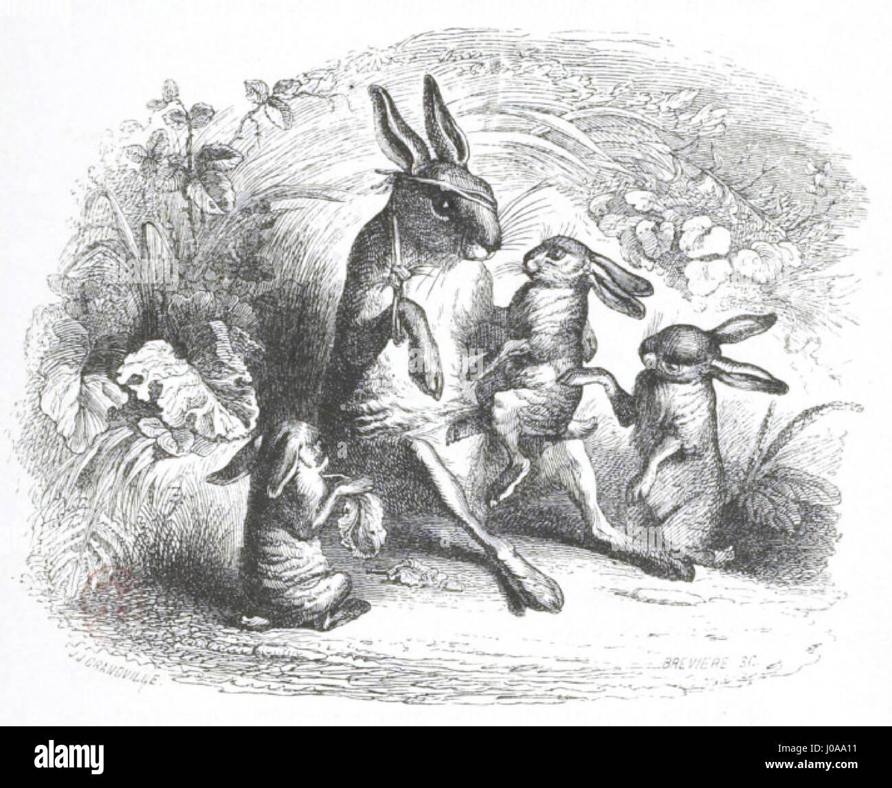 Scènes de la vie privée et publique des animaux, tome 1 0085 - Stock Image