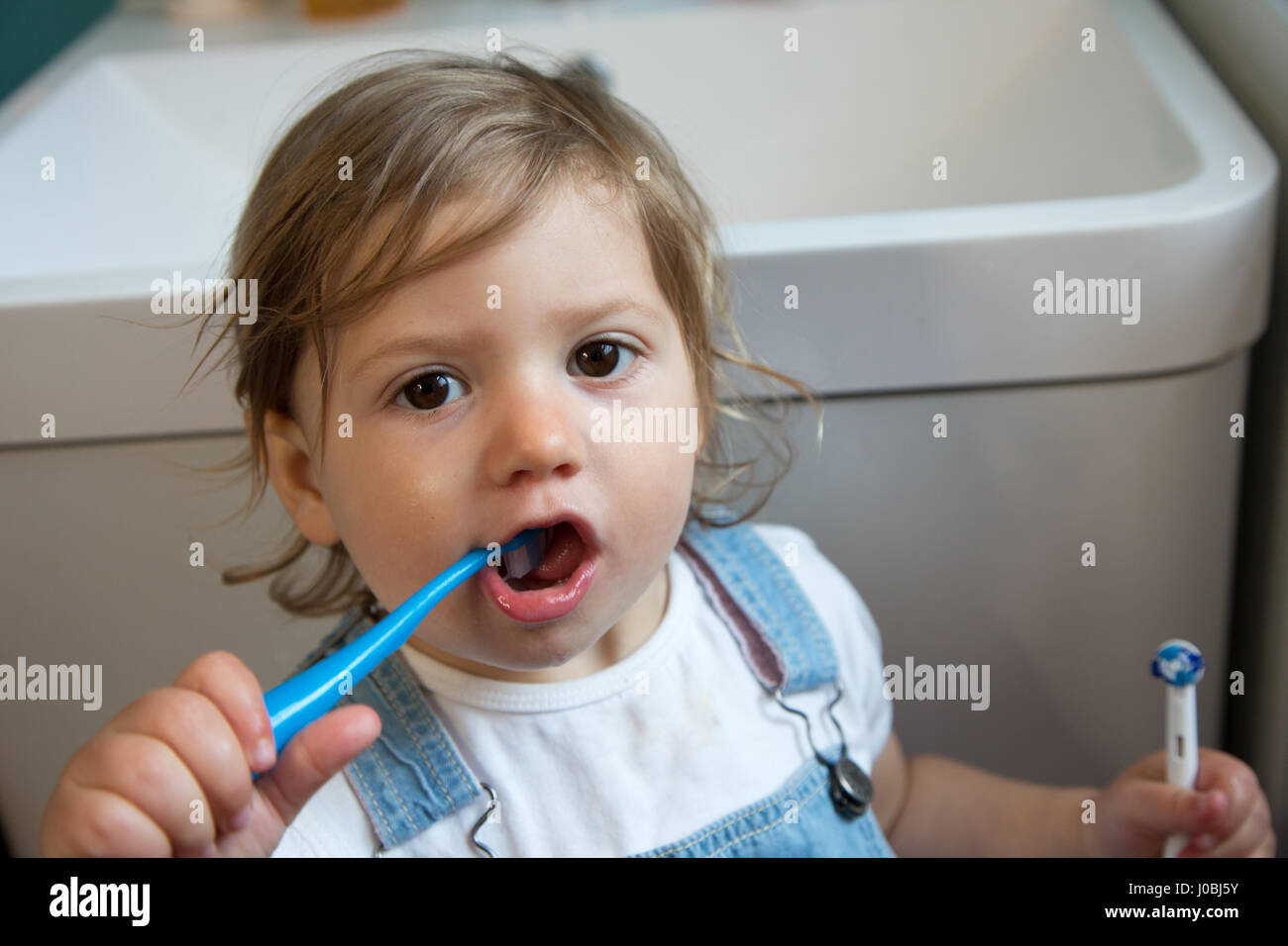 Girl toddler brushing her teeth using a child toothbrush, and holding an adult electric toothbrush in her other - Stock Image