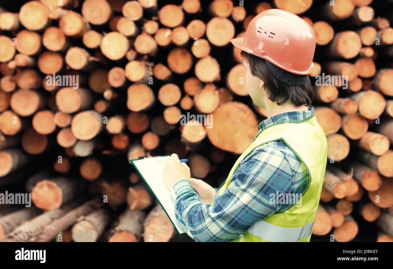 Worker in helmet counts wood lumber Stock Photo