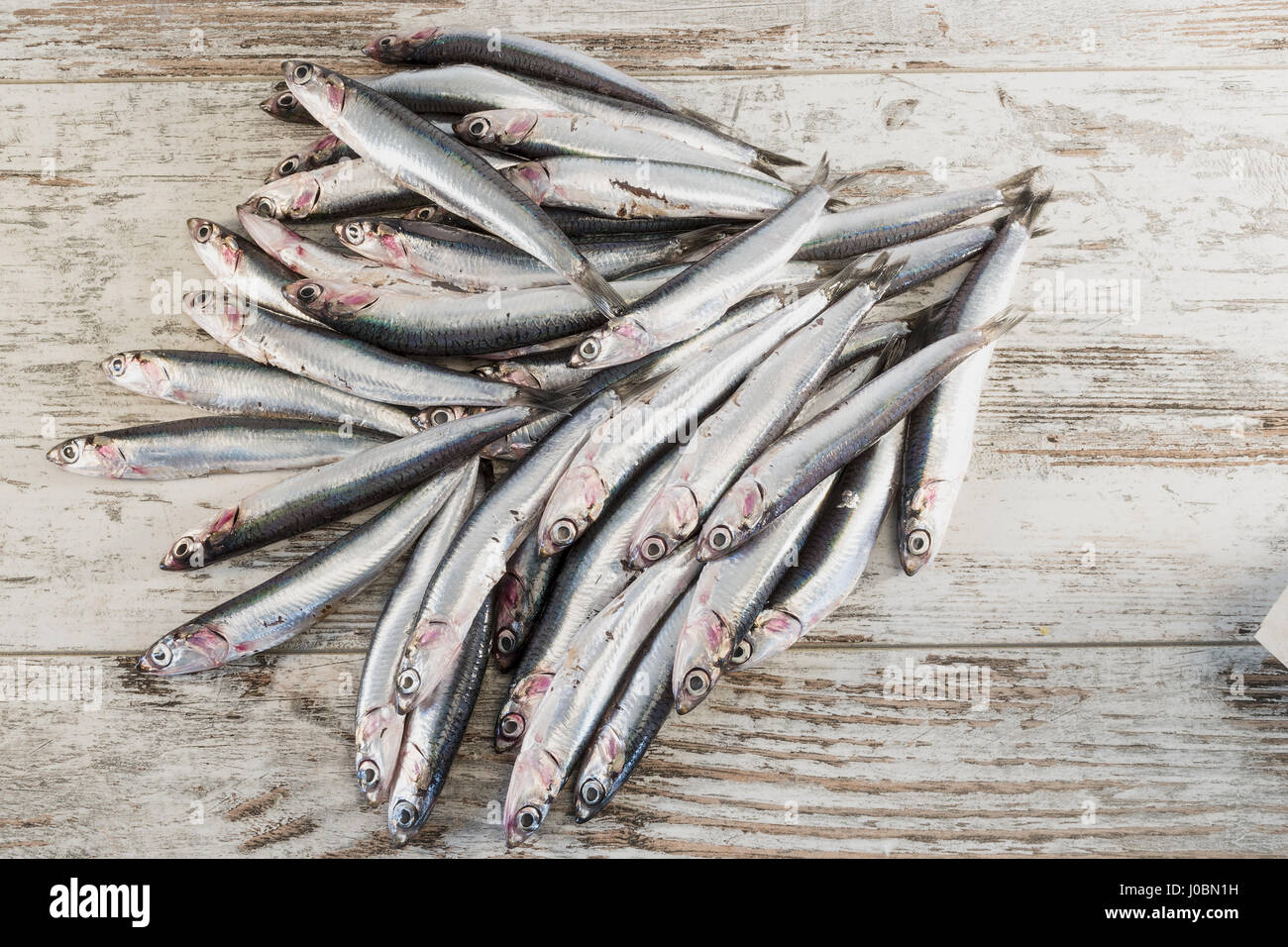 fresh anchovies on rustic table top - Stock Image