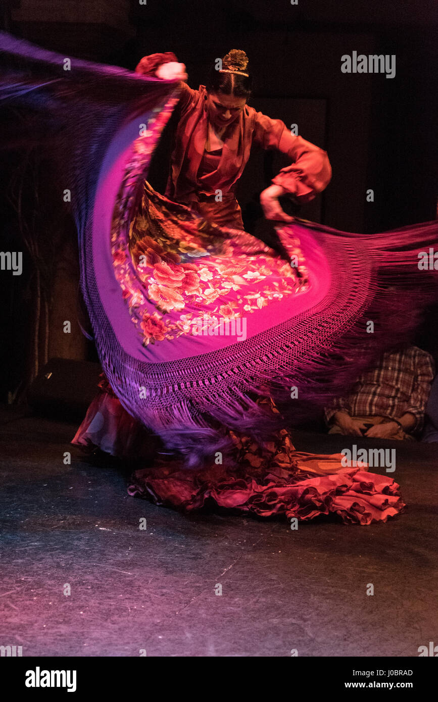A nightly Flamenco show being performed at the Museo del baile flamenco in the Old Town of Seville, Spain.   The - Stock Image