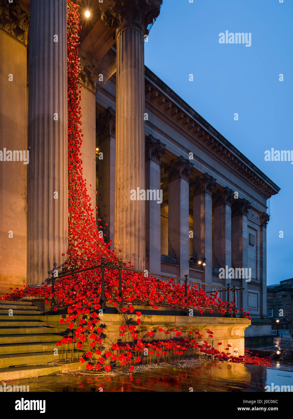 Poppies Weeping Window cascades down the front facade of St. George's Hall in Liverpool, Merseyside, England, - Stock Image