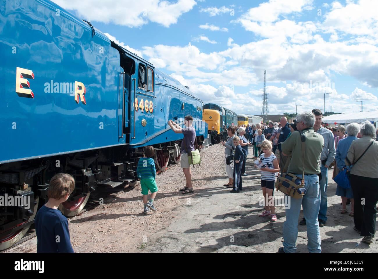 Man photographing side of Mallard steam train - Stock Image