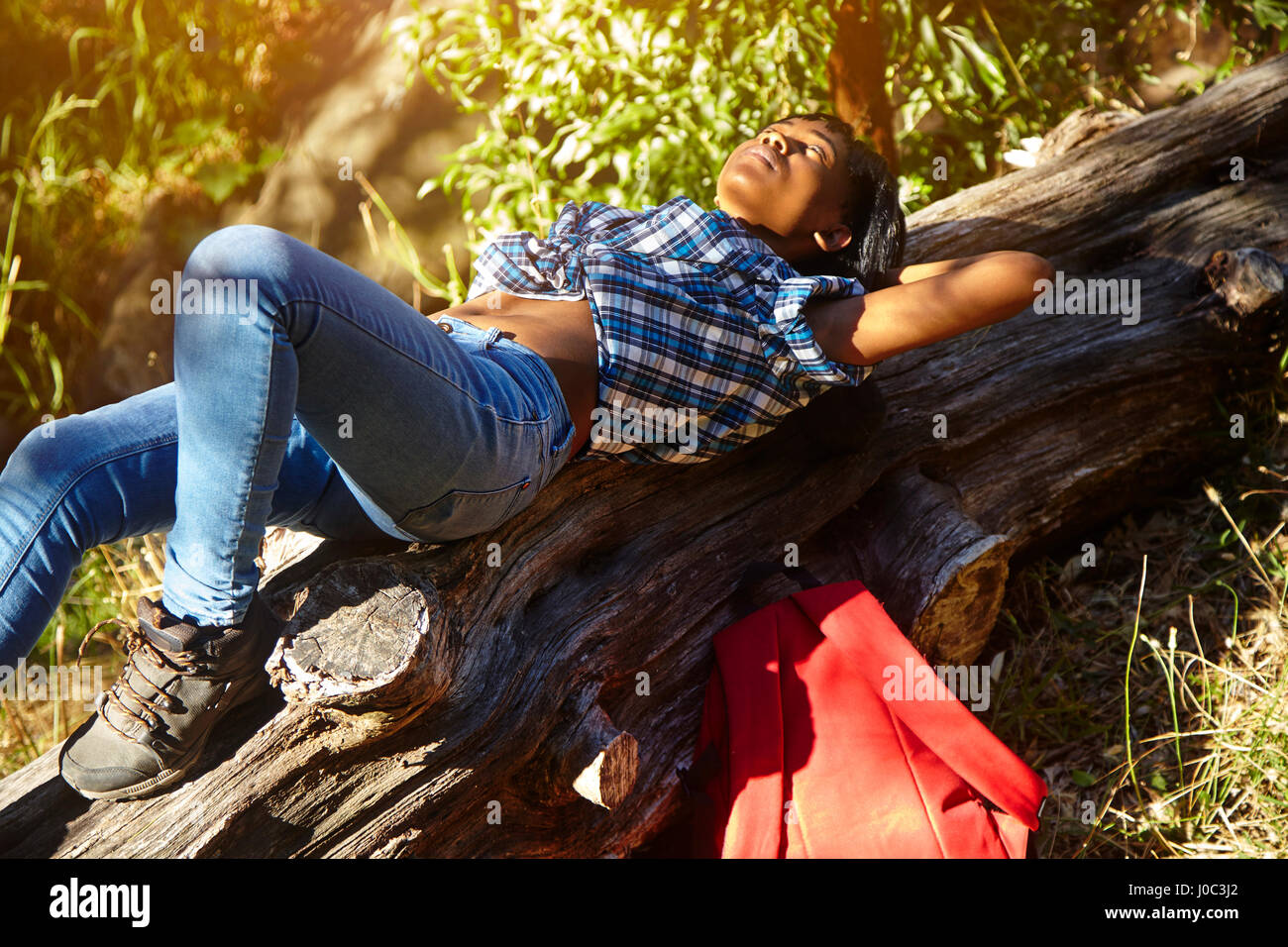 Young woman lying on fallen tree, Cape Town, South Africa - Stock Image