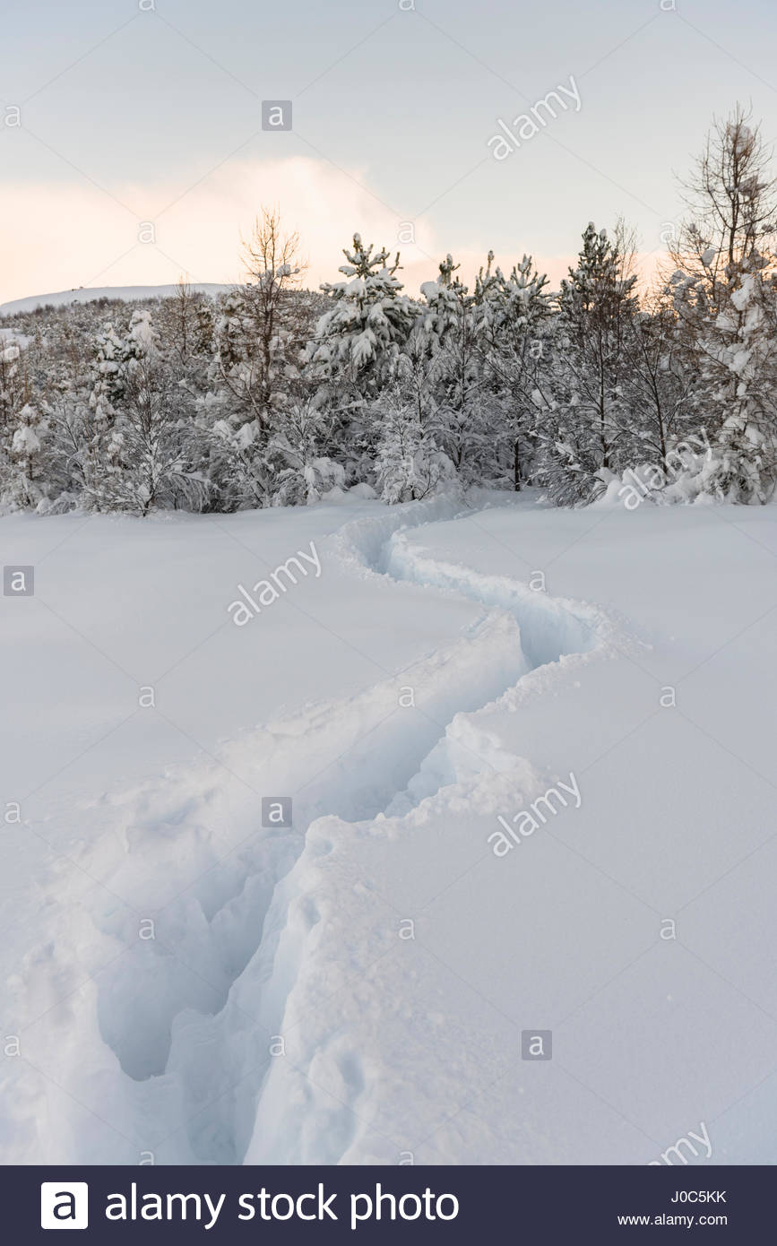 Trails through deep snow at Lake Reynisvatn, Iceland - Stock Image