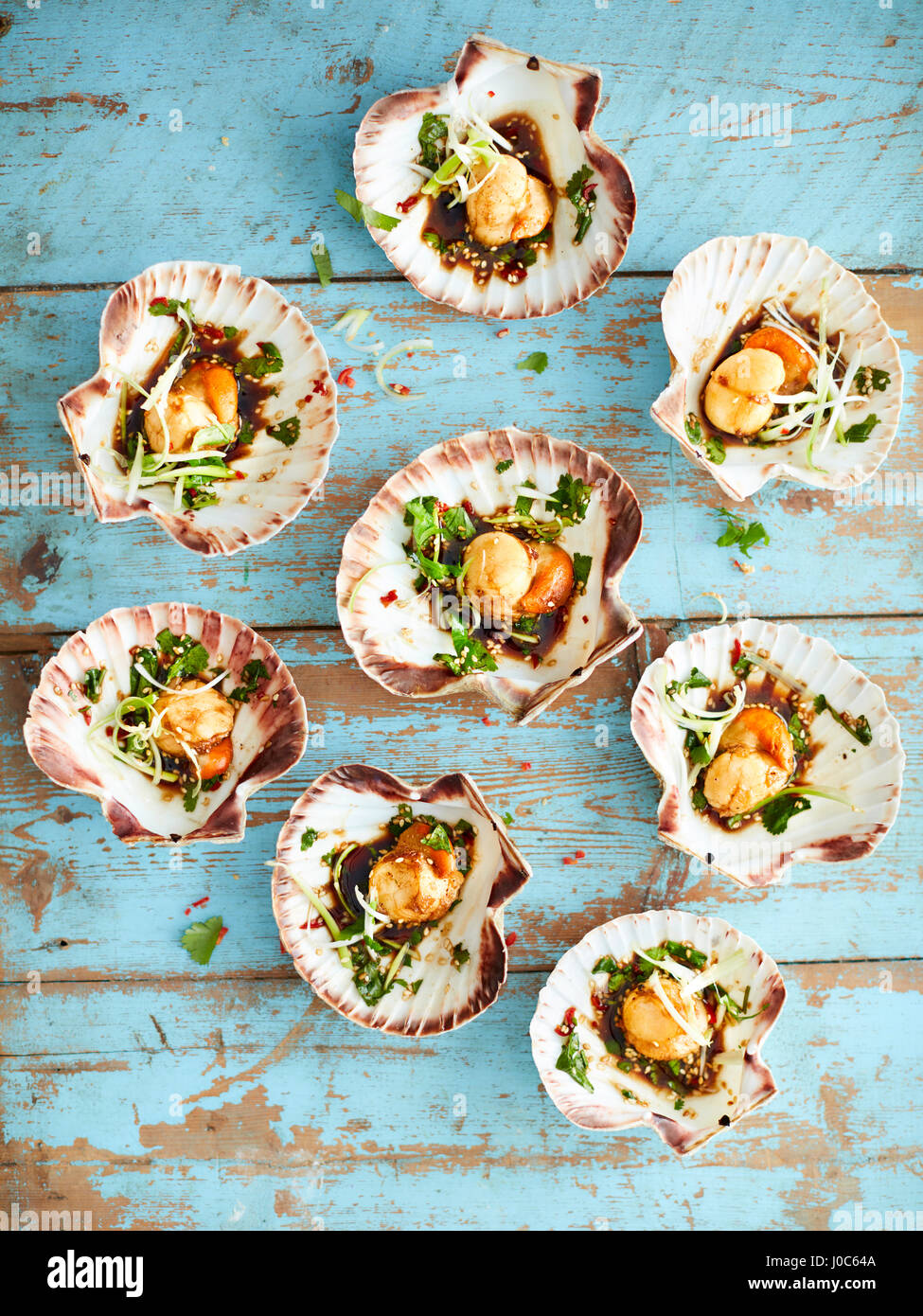 Scallops with shells starter - Stock Image