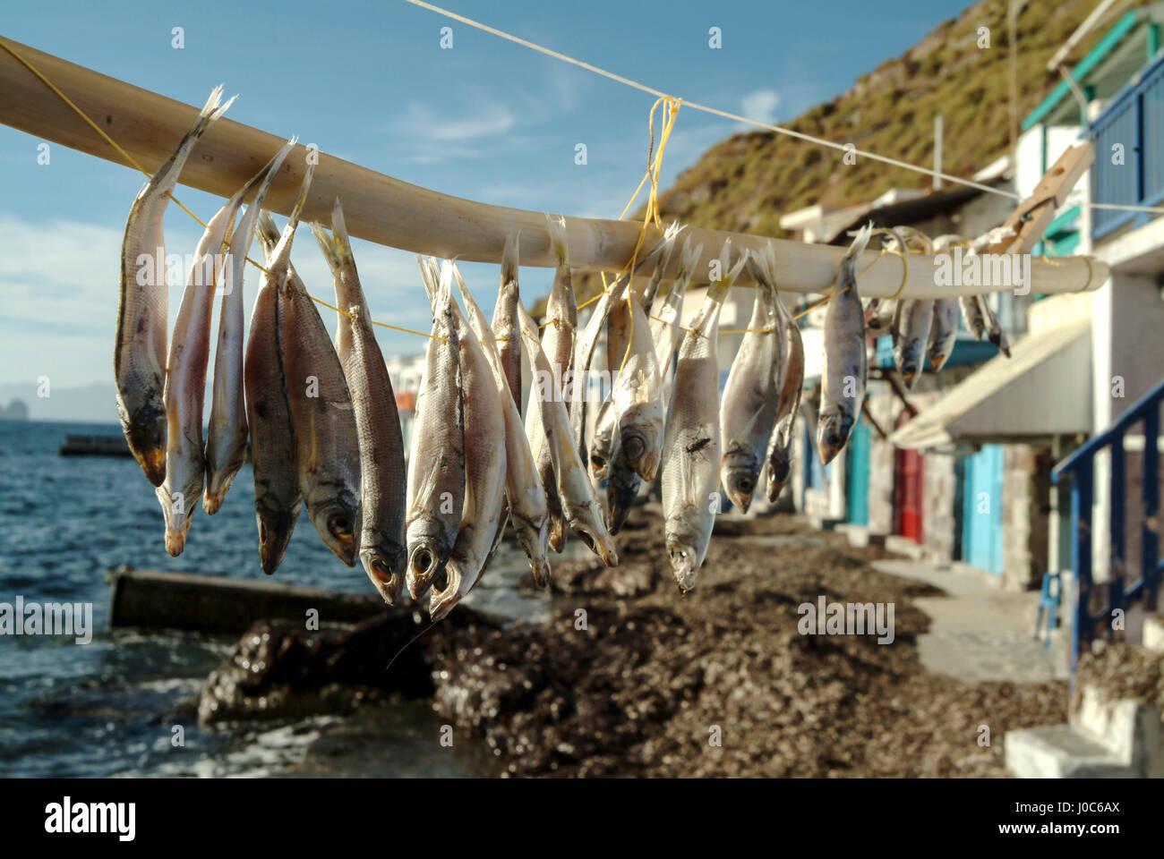Fish drying on line, Mandrakia Village, Amadas, Milos Island, Greece - Stock Image
