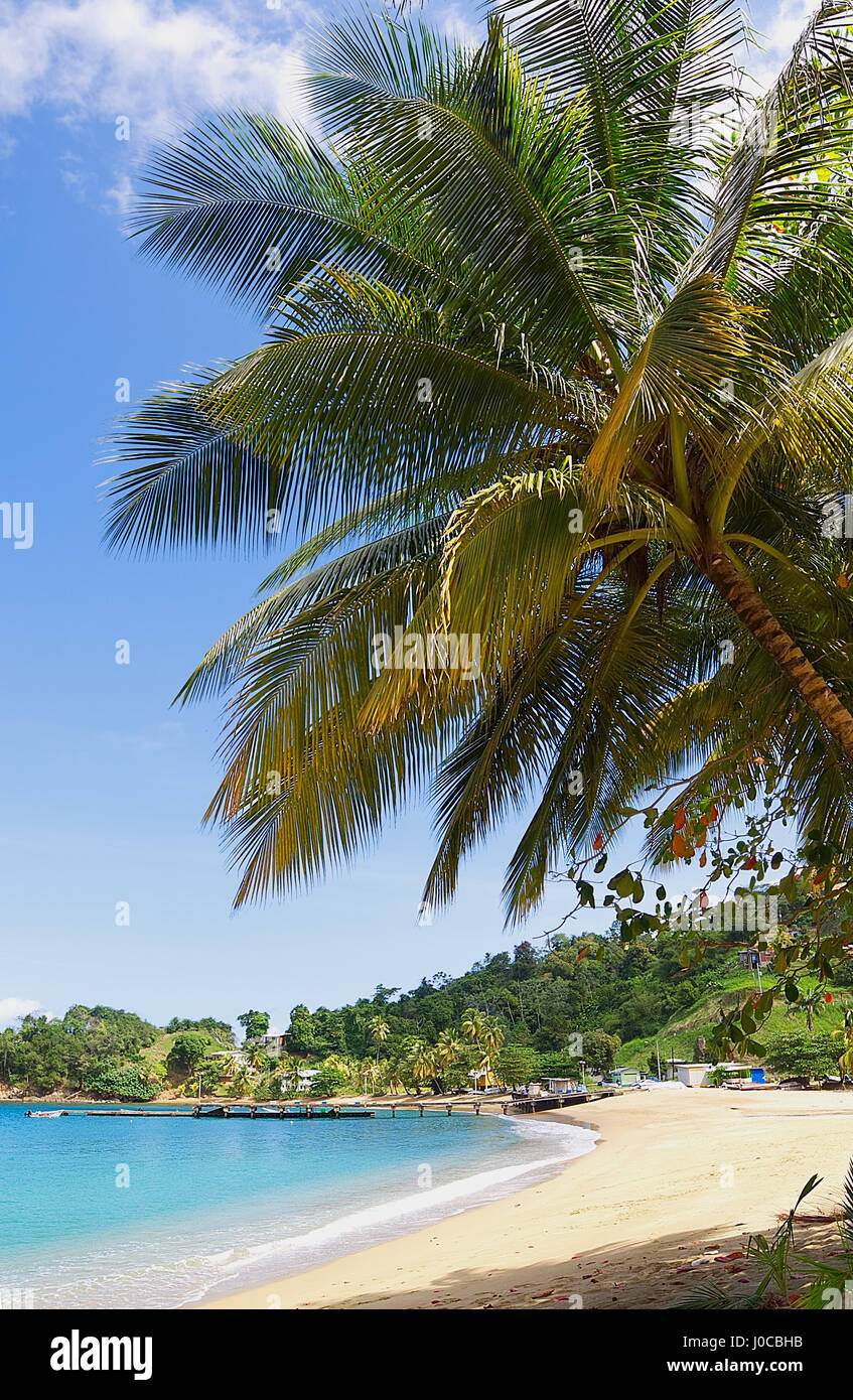 Republic of Trinidad and Tobago - Tobago island - Parlatuvier bay - Caribbean sea - Stock Image