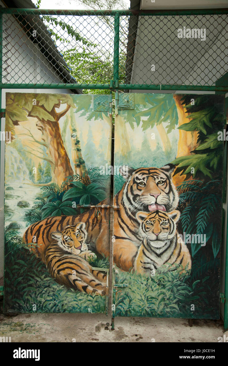 Tiger painted on gate, srircha tigar zoo, thailand, asia - Stock Image