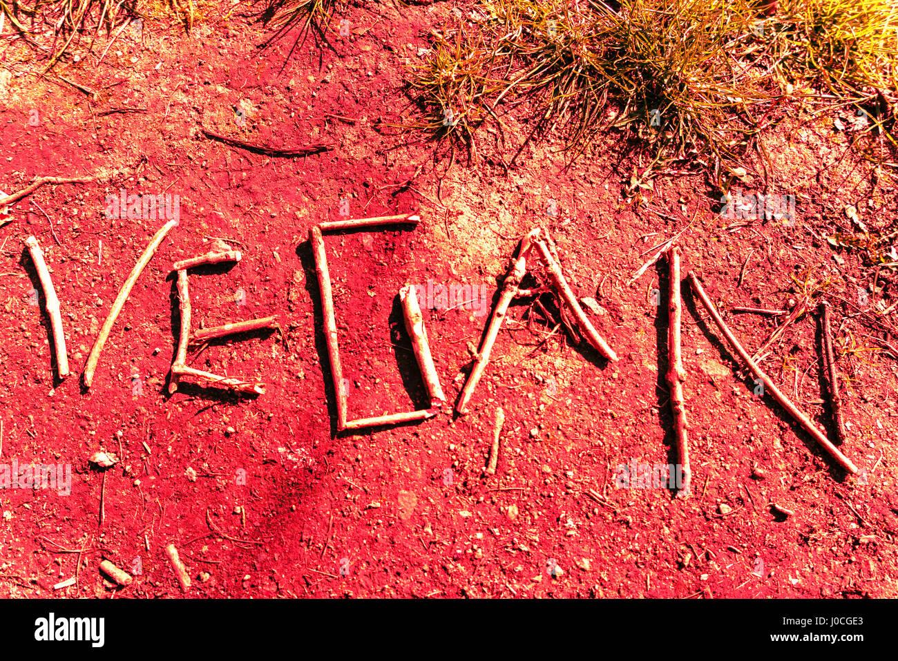 The word 'Vegan' shown as lifestyle graffiti Stock Photo
