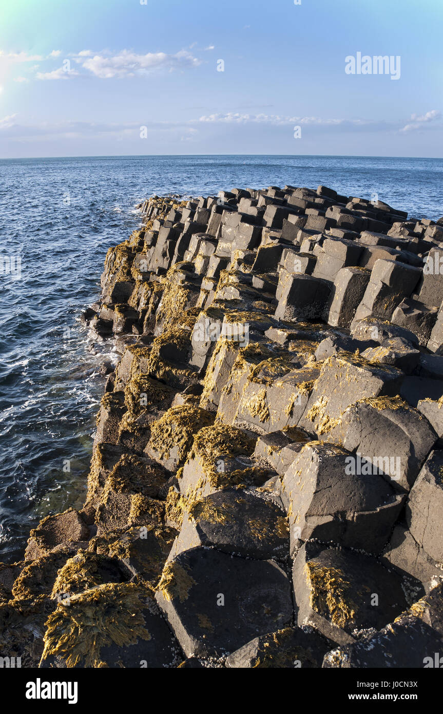 Giants Causeway geological formation in Antrim, Northern Ireland, in sunset light. - Stock Image