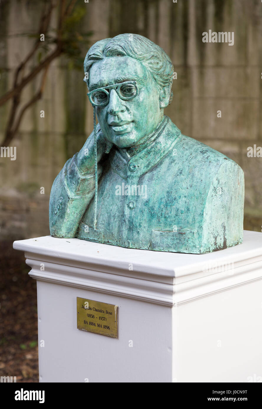 Jagadish Chandra Bose - or Jagadis Chandra Bose,  a bust in the grounds of Christs College Cambridge UK - Stock Image