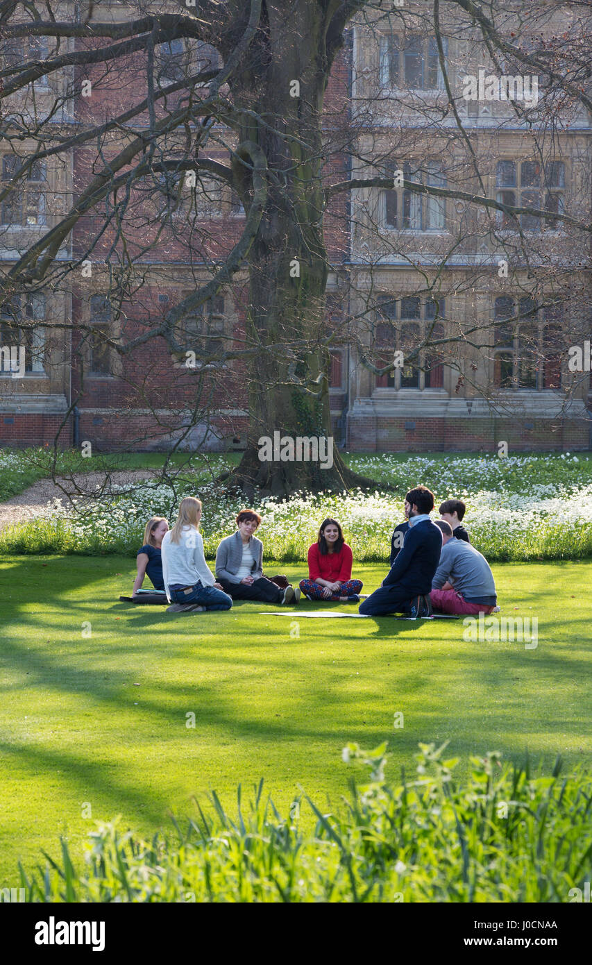 Cambridge University students studying outsidein the gardens of  Sidney Sussex College, Cambridge University, Cambridge - Stock Image