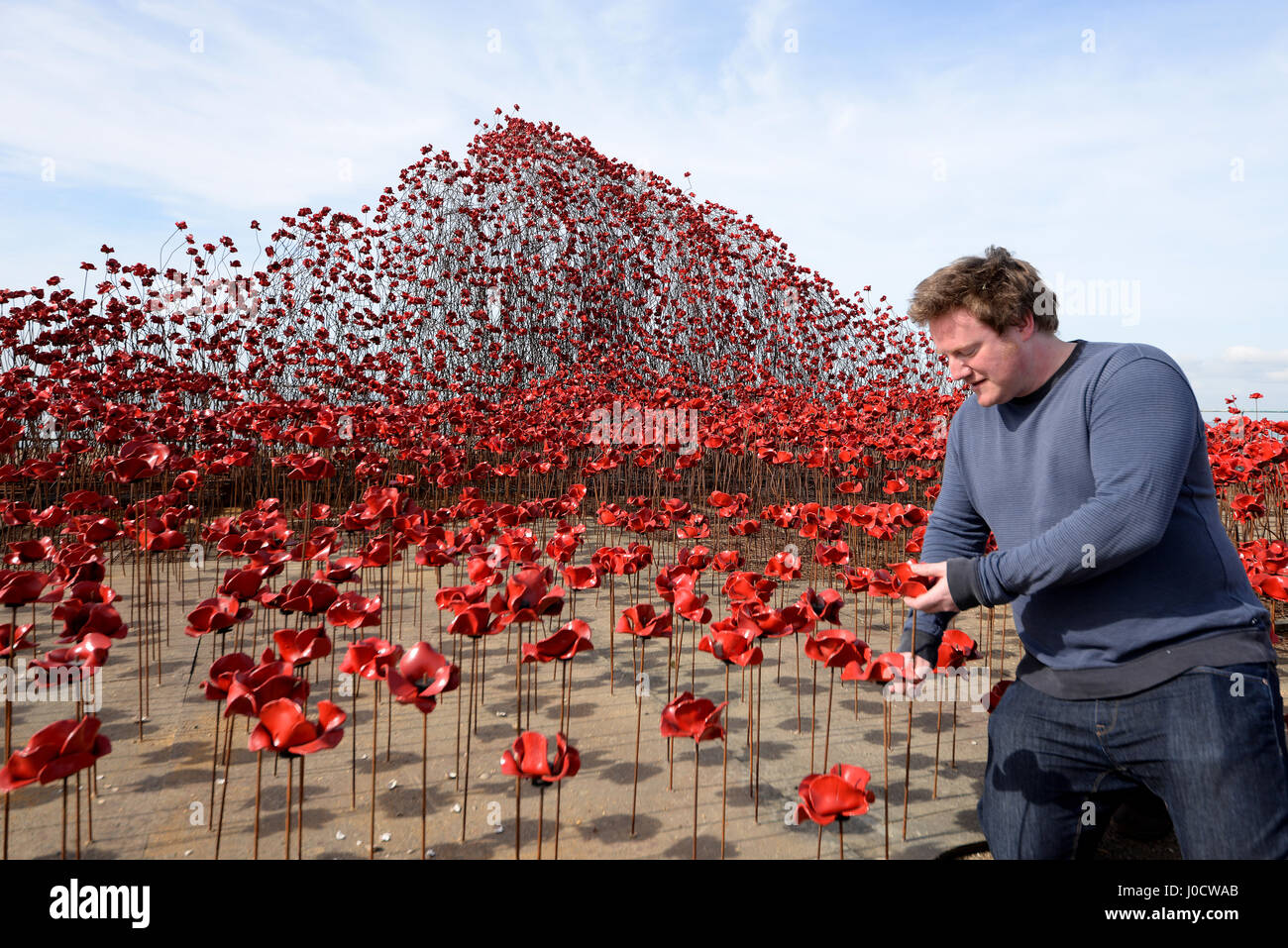 'Poppies: Wave' is one of two sections of the 'Blood Swept Lands and Seas of Red' art installation. - Stock Image