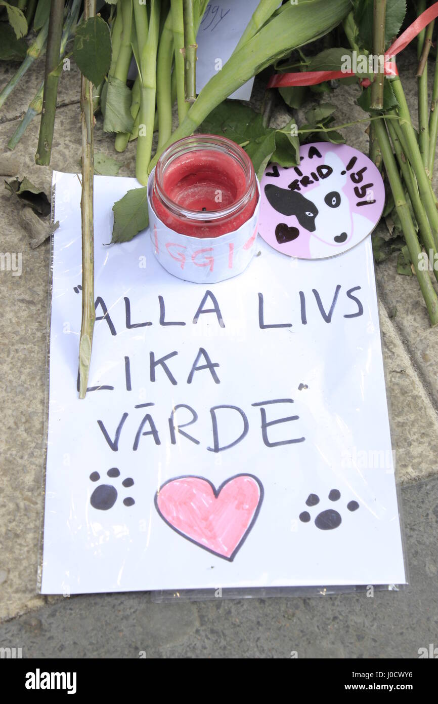 11th April 2017.  A pet lover's hand written phrase 'Alla livs lika Varde' approximate meaning 'All - Stock Image
