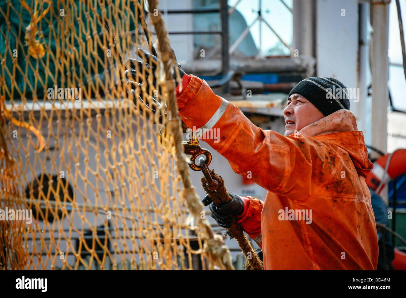 Primorye Territory, Russia. 11th Apr, 2017. A fisher prepares a seine net for throwing onboard an MRS-450 commercial - Stock Image