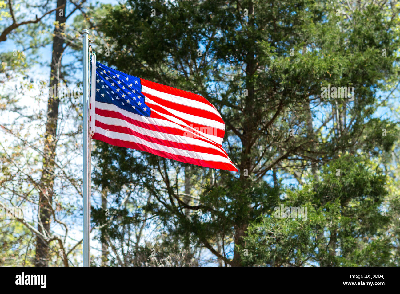 American flag blowing in wind on a spring day in the woods. Stock Photo