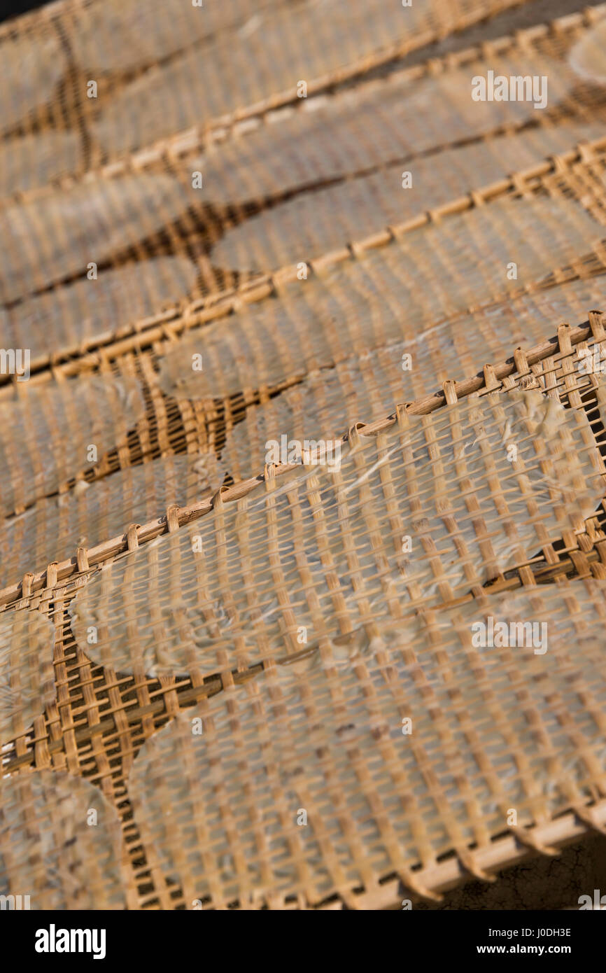 Vertical view of traditional rice paper drying in the sunshine in Vietnam. - Stock Image