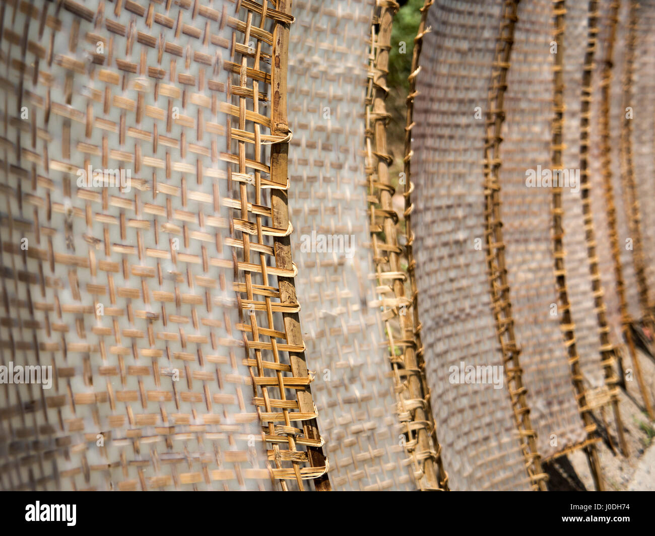 Horizontal close up of traditional white rice noodles in sheet form drying out in the sunshine in Vietnam. - Stock Image