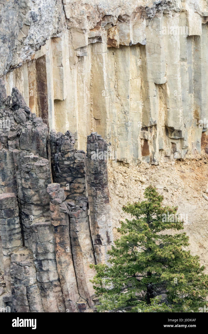 Rock columns in the canyon north of Tower Fall in Yellowstone National Park, Wyoming, USA.  They were formed by - Stock Image