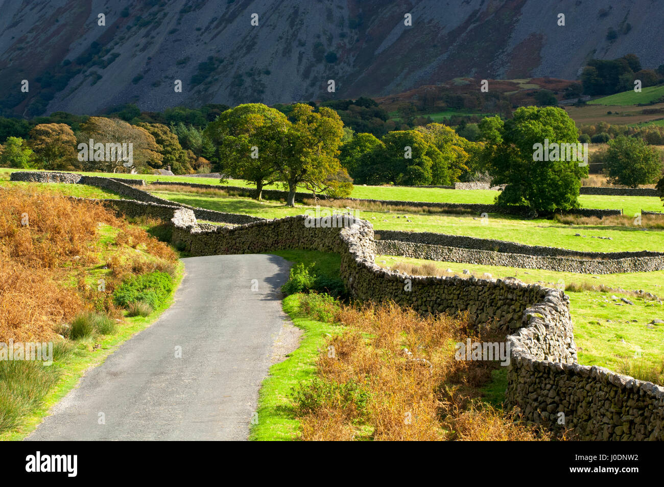Rolling road and pastureland in the Lake District, Cumbria, England. - Stock Image