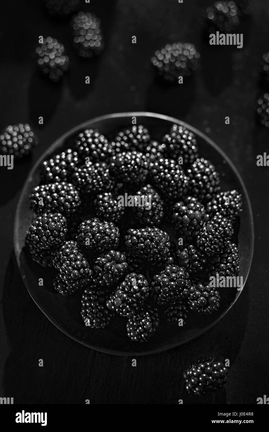 Blackberries - Stock Image