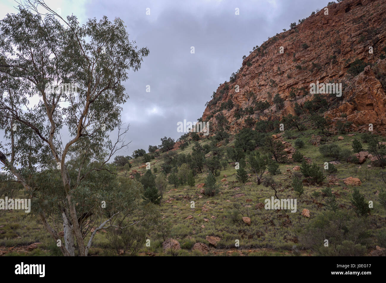 Alice springs Simpsons Gap Northern Territory - Stock Image