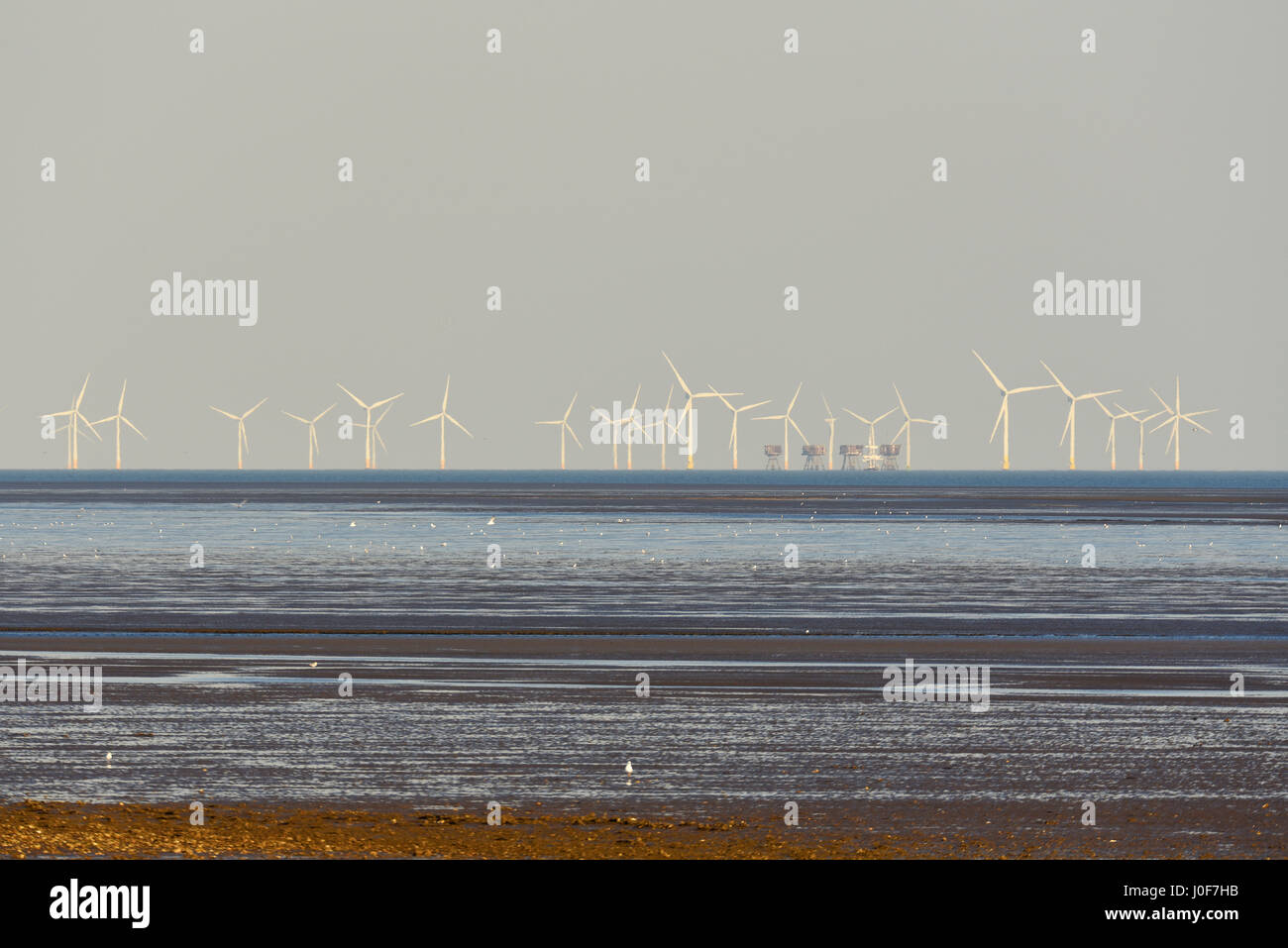 Kentish Flats Offshore Wind Farm and Red Sands Maunsell Fort in the mouth of the Thames Estuary off the Essex and - Stock Image