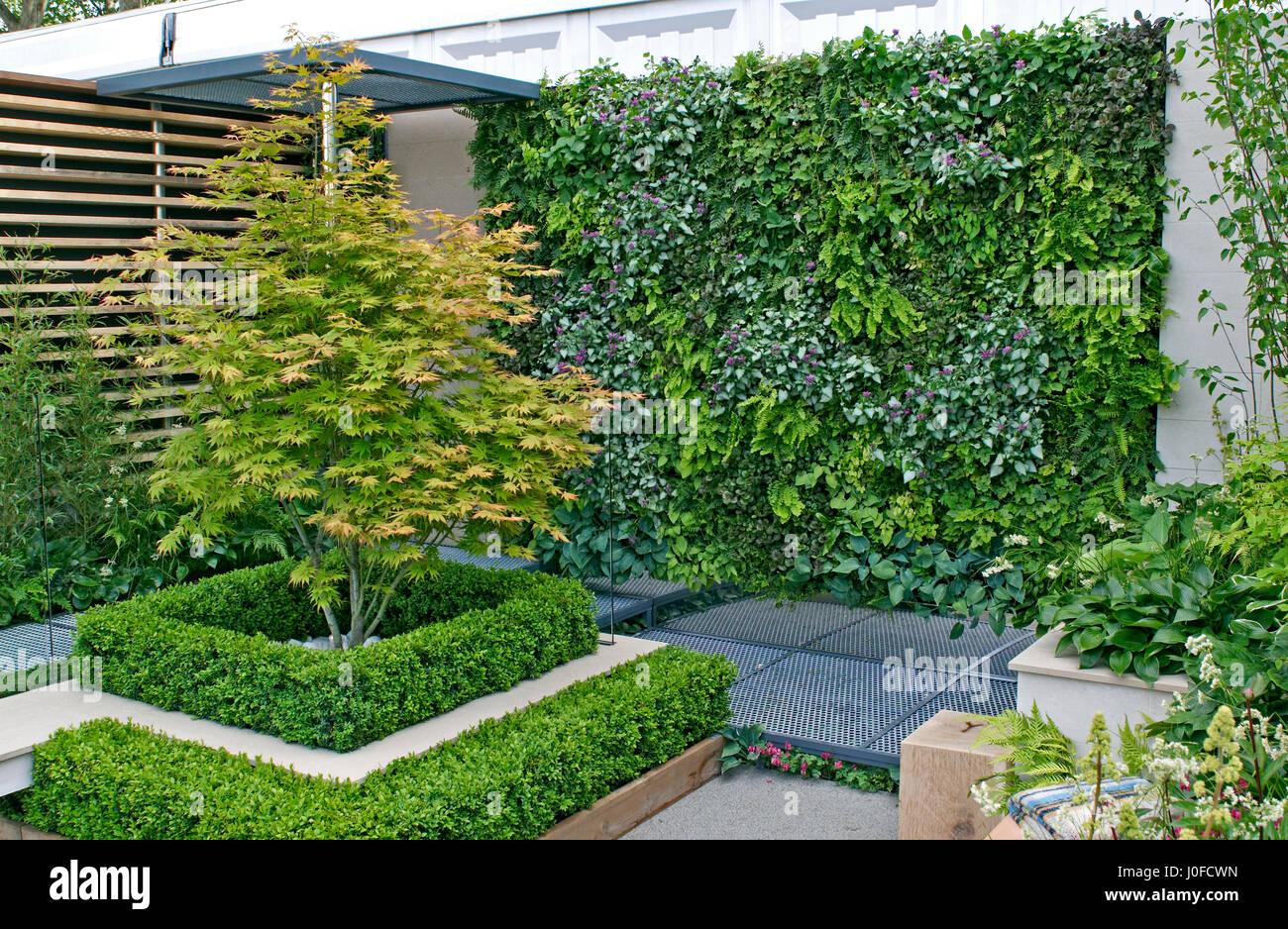 A Small Urban Environmental Eco Garden With A Living Plant Wall Stock Photo Alamy