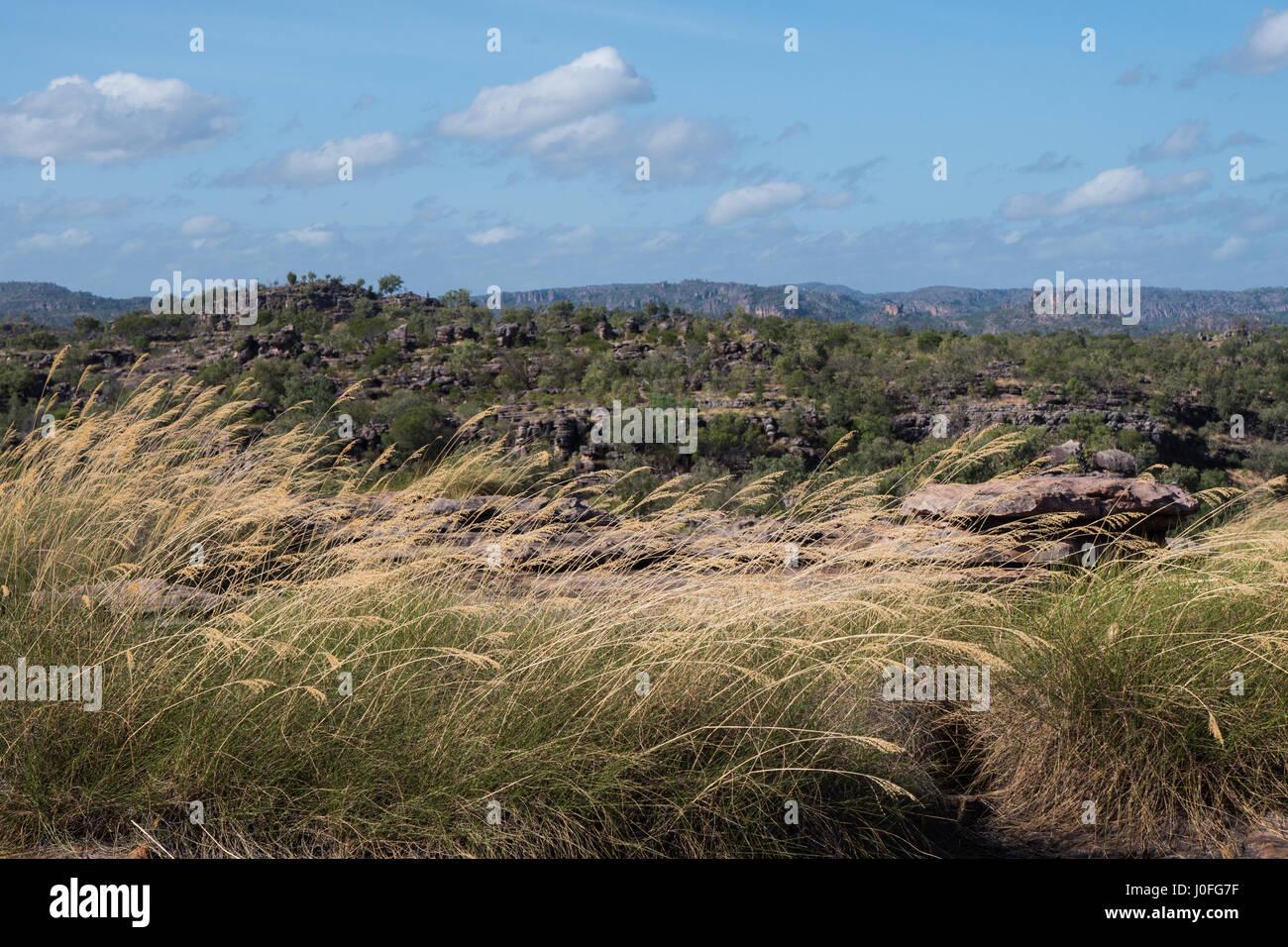 Kakadu National Park view accross valley Stock Photo