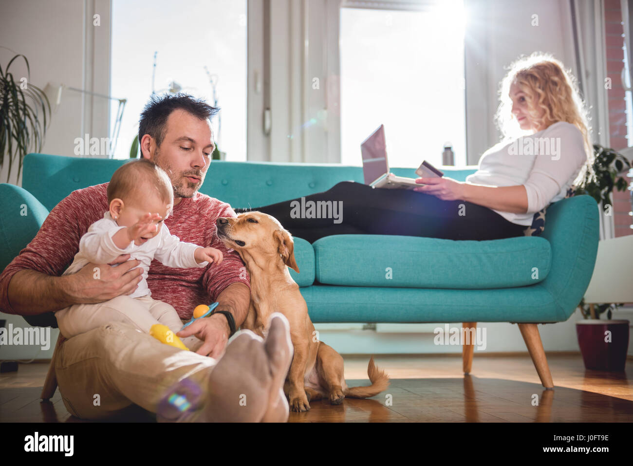 Father sitting on the floor and with baby in his arms playing with dog while wife sitting on sofa and doing online - Stock Image