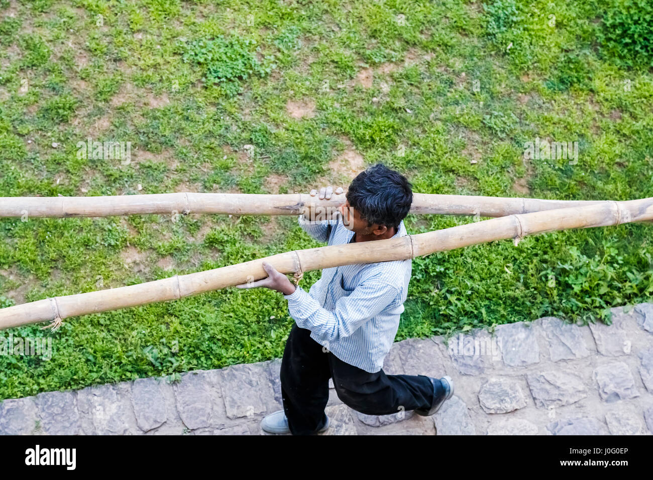 Indian workman carrying large bamboo poles, scaffolding at a construction site, Pragpur, a heritage village, Kagra - Stock Image
