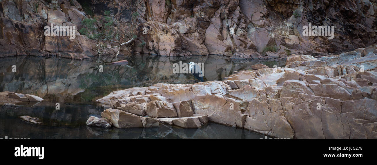 MacDonnell Ranges Redbank Gorge Northern Territory - Stock Image