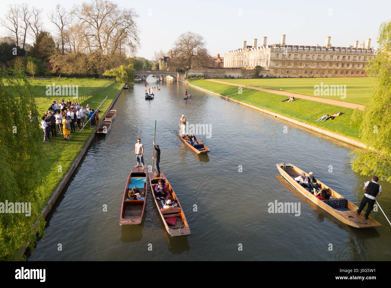 Cambridge Punting on the River Cam on the Backs, Cambridge UK - Stock Image