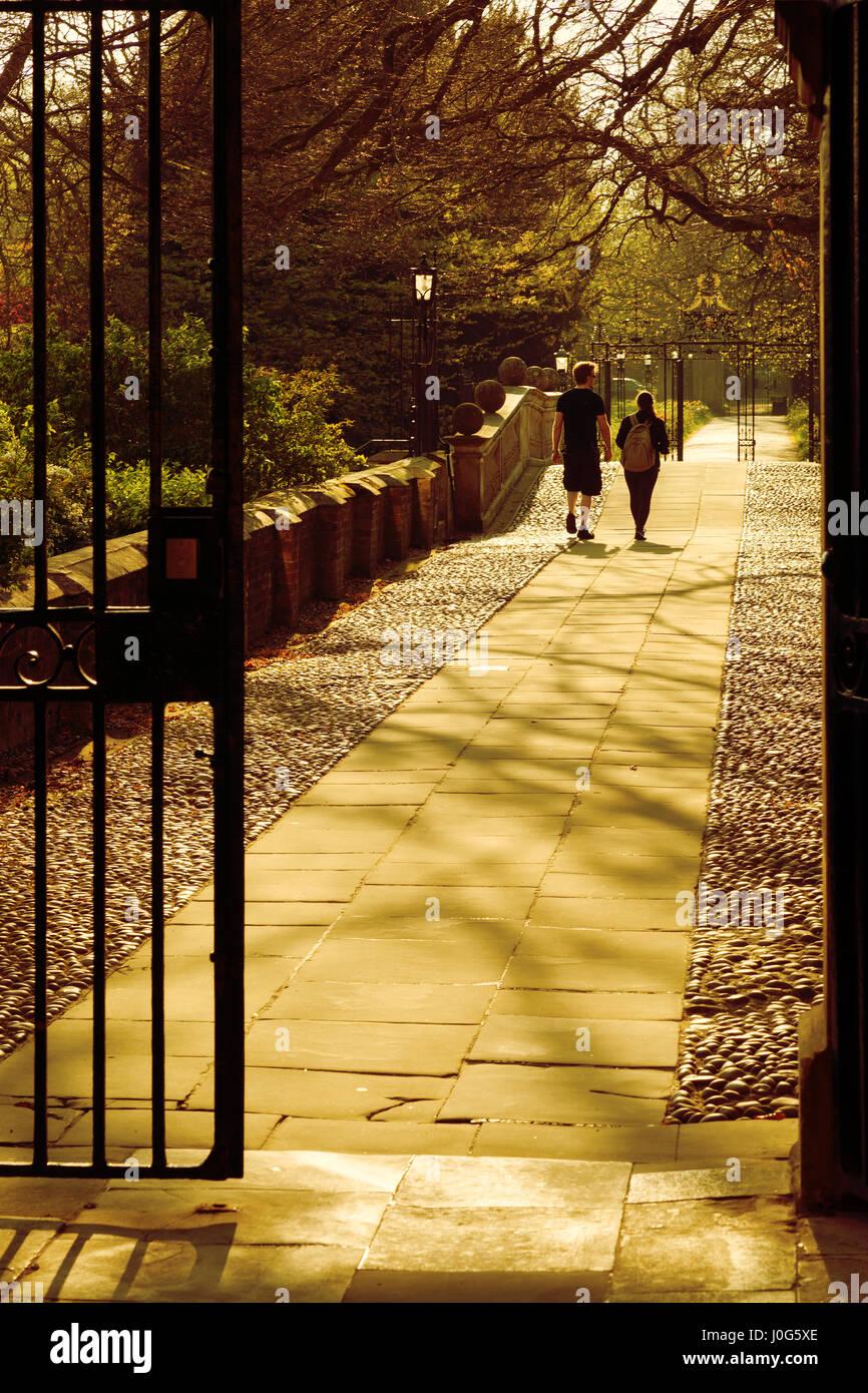 Cambridge University - Clare College - university students walking in Clare College, Cambridge University, Cambridge - Stock Image