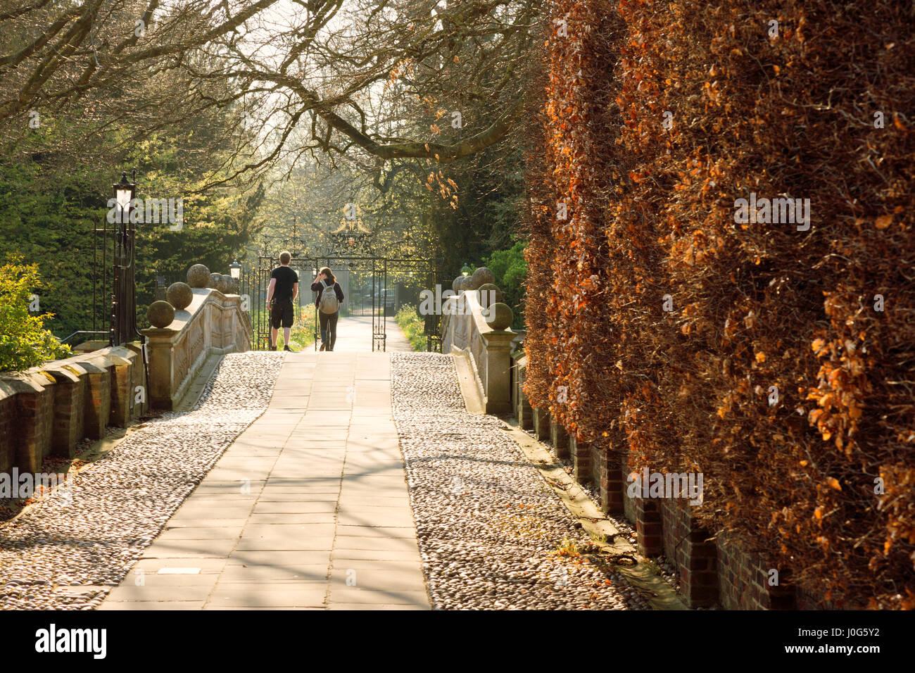 University of Cambridge - People walking in the grounds of Clare College Cambridge University, Cambridge UK - Stock Image