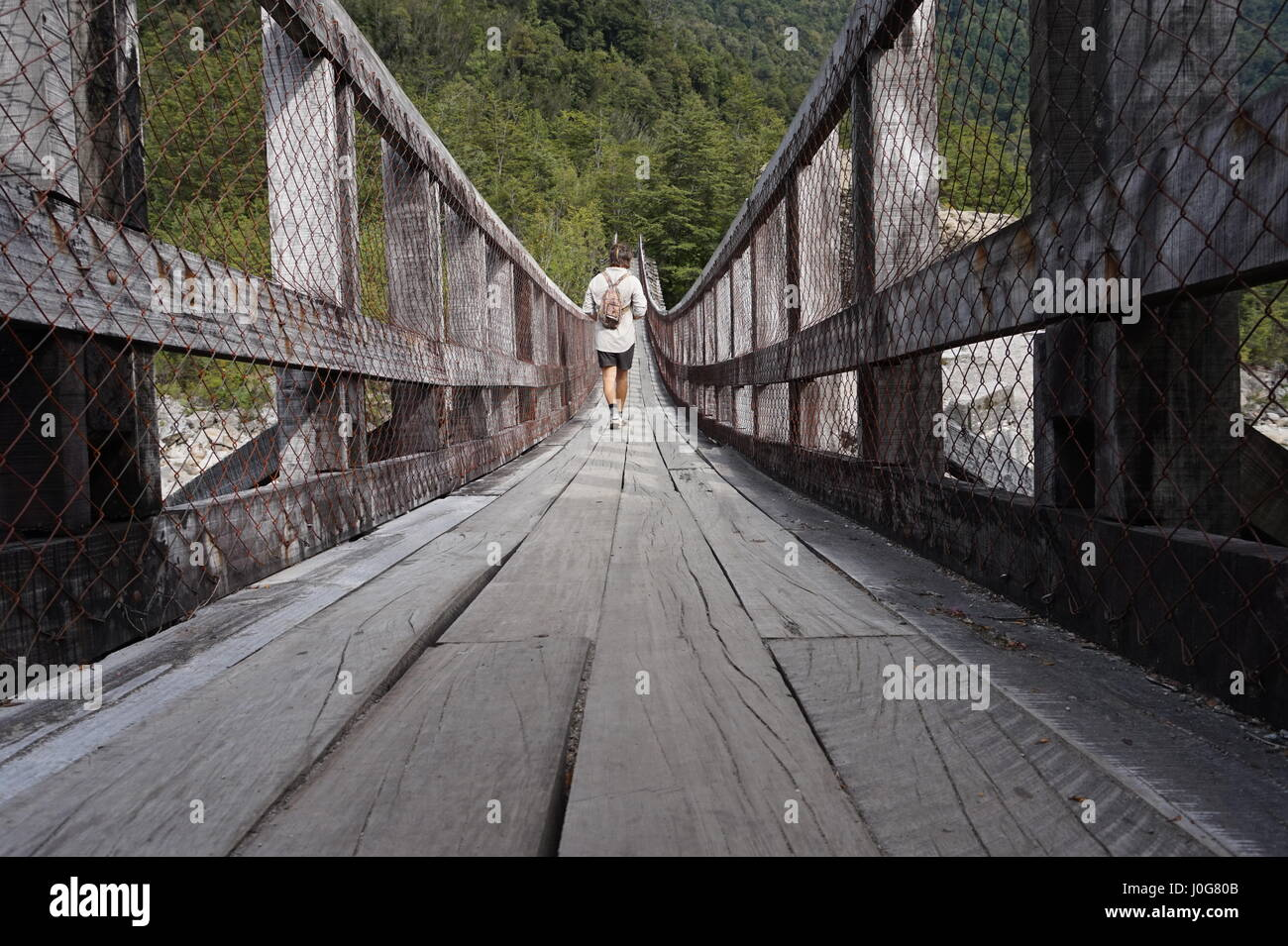 Hiker on a suspension bridge in Queulat National Park (Parque Nacional Queulat), Chile - Stock Image
