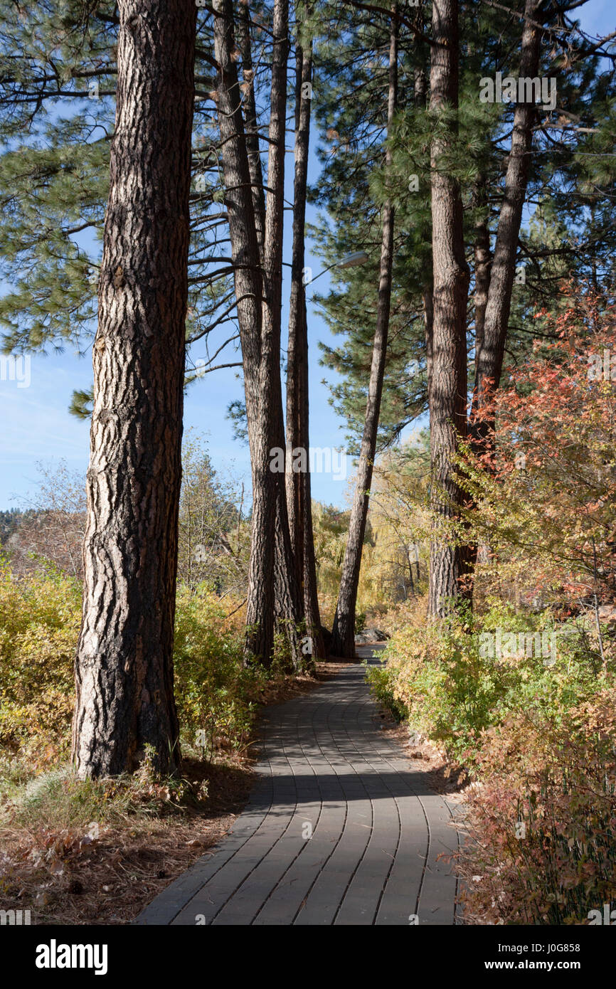 This stone pathways skirts the Deschutes River in Bend, Oregon. Here it is in all its fall splendor. - Stock Image
