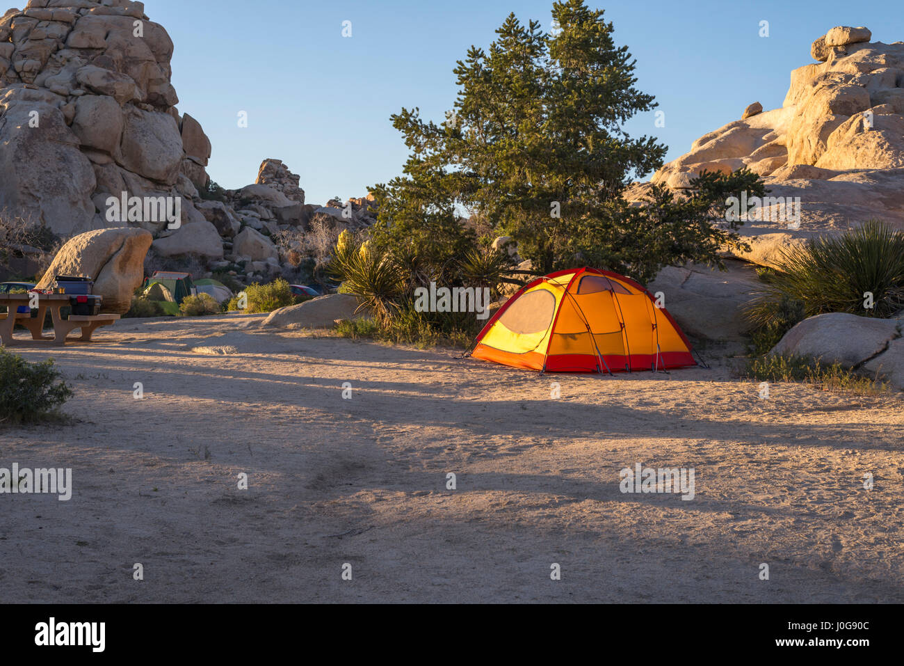Camping tent at campground area. Joshua Tree National Park, California, USA. - Stock Image