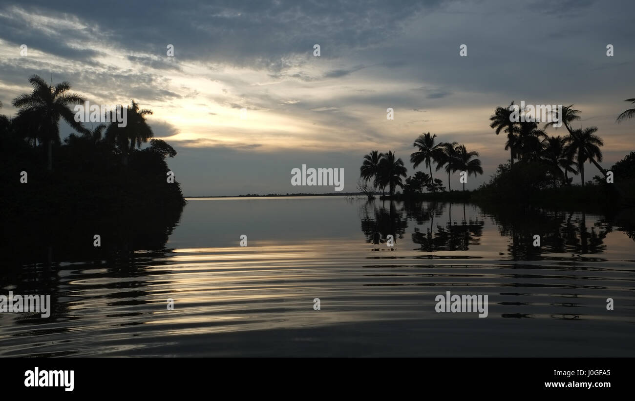Evening view in the Zapata Nationalpark Cuba - Stock Image
